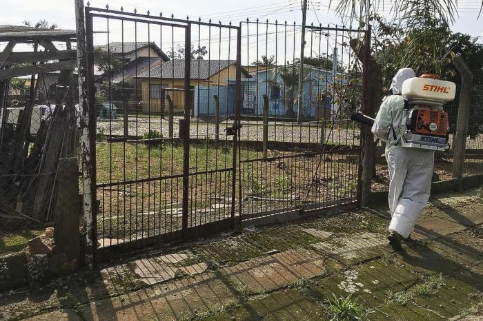 Dengue: casos autóctones em Porto Alegre aumentam 90% em uma semana