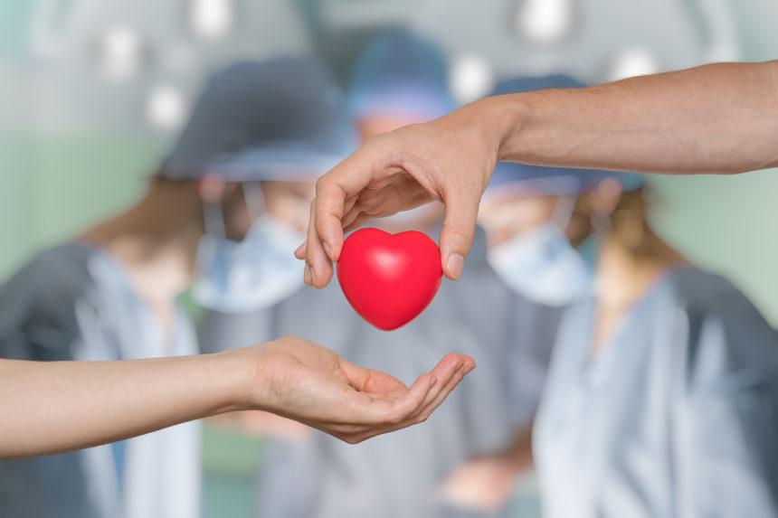 SUS oferece mais 3 medicamentos para jovens transplantados de fígado